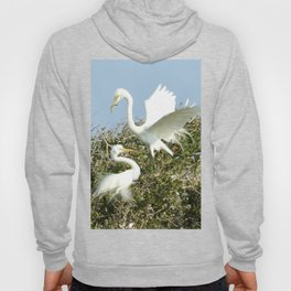 Bird Series: Nesting Great Egrets Hoody