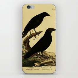 Crow And Raven iPhone Skin