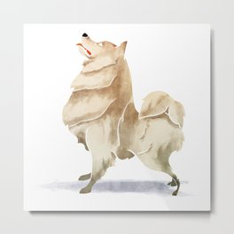 Samoyed Metal Print