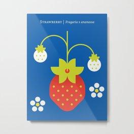 Fruit: Strawberry Metal Print