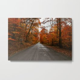 Lovely Roads Metal Print