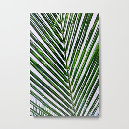 Palms on a Bahamas Afternoon Metal Print