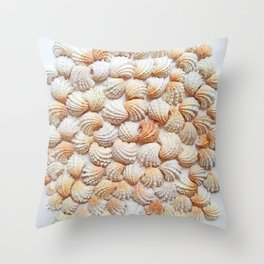 Jewel Box Bliss Throw Pillow