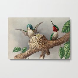 Hummingbirds & Chicks Nesting Portrait Metal Print