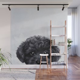 Toy poodle Black Wall Mural