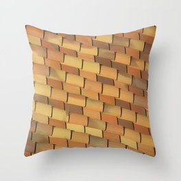Anonymous Rooftop Throw Pillow