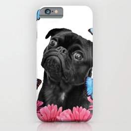 Back pug with pink Gerber and blue morph butterfies iPhone Case