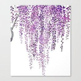 purple wisteria in bloom Canvas Print