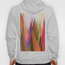 Abstract Composition 620 Hoody