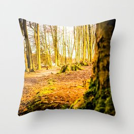 Moss Covered Tree Stump Hiking Path Forest bright Throw Pillow