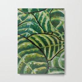 Fiddle Leaf Fig Leaf Pattern Metal Print