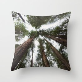 Redwood Portal - nature photography Throw Pillow