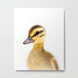 Baby Duck Metal Print