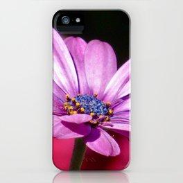 Purple Gerbera Daisy-Close Up iPhone Case