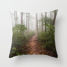 Smoky Mountain Forest Adventure III - National Park Nature Photography Throw Pillow