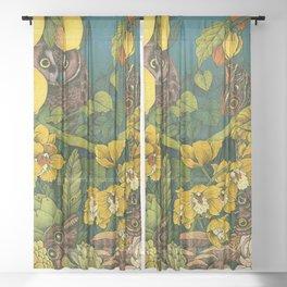 Aureate Sheer Curtain