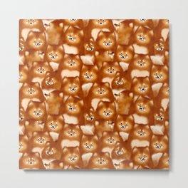 A Bunch of Pomeranians Pattern Metal Print