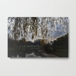afternoon in fall Metal Print
