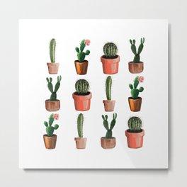 Various Cacti Metal Print