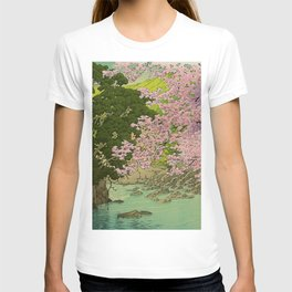 Shaha - A Place Called Home T-shirt