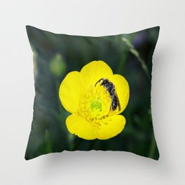 Sleepytime Bee Throw Pillow