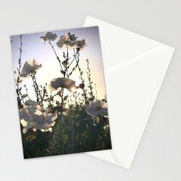 Matilija Poppy Garden Stationery Cards