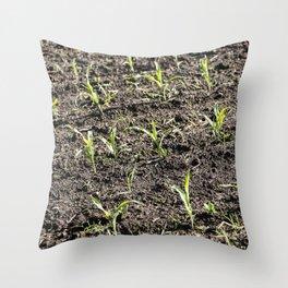 Corn Field 6 Throw Pillow