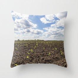 Corn Field 3 Throw Pillow