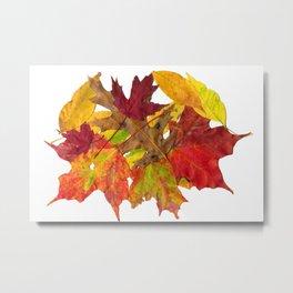 Autumn Fall Leaves Foliage Art Metal Print