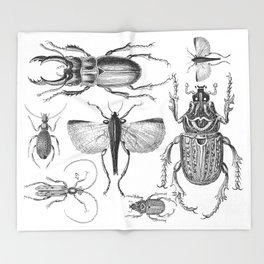 Vintage Beetle black and white drawing Throw Blanket