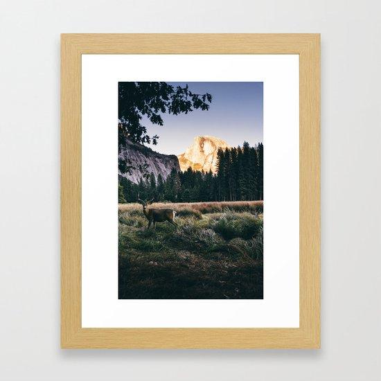 Yosemite Valley Buck by jasde
