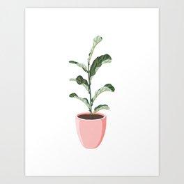 Potted Fiddle-Leaf Fig Plant Art Print
