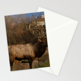 Loveland Elk Stationery Cards