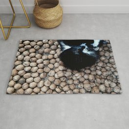 Two little kitties on some nuts Rug