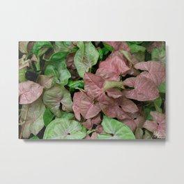 Jungle Leaves Type1 Metal Print