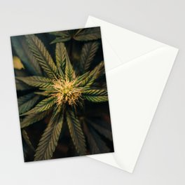 Cannabis Bud Nearing Maturity Stationery Cards