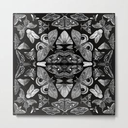 Moth Formations Metal Print