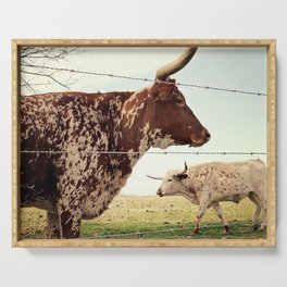 Texas Longhorn Cattle Serving Tray