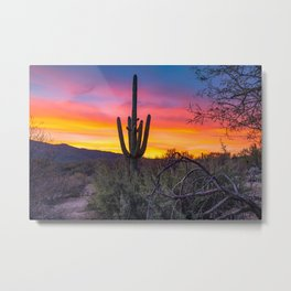 Land of Giants - Saguaro Cactus at Sunrise in the Sonoran Desert Metal Print