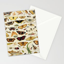 """Jan van Kessel the Elder """"An Extensive Study of Butterflies, Insects and Seashells"""" Stationery Cards"""