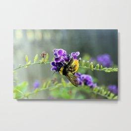 Bee in Purple Duranta Art Photography, Summer's End Metal Print