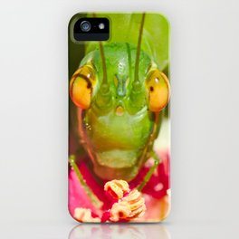 Katydid Square Format iPhone Case