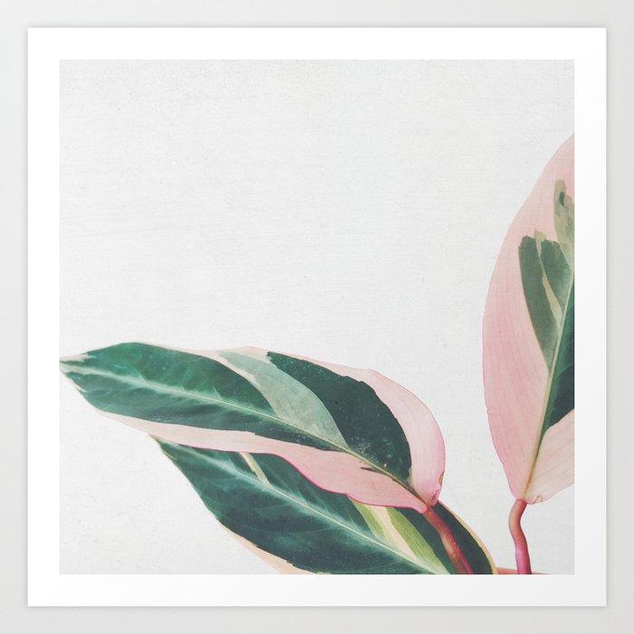 Pink Leaves II Kunstdrucke