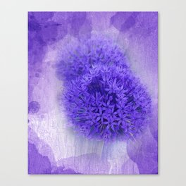 dreaming lilac -7- Canvas Print