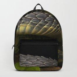 Black Dragon - Venomous Black Bush Viper Snake (Atheris squamigera) Backpack