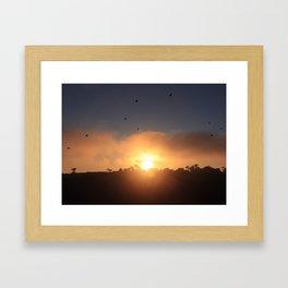 SOARING OVER SUNSET Framed Art Print