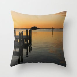 Sizzling Serenade Throw Pillow