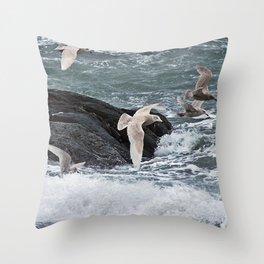 Gulls shop for Dinner Throw Pillow