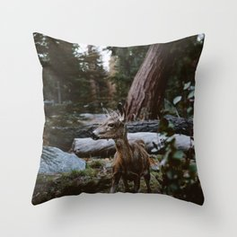 Sequoia Forest Deer Throw Pillow