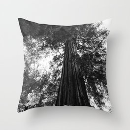 Sequoia National Park V Throw Pillow